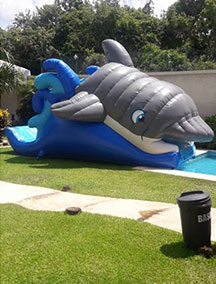 Inflable Tobogan Delfin
