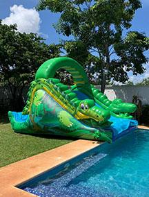 Inflable Tobogan Lagarto